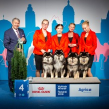 Kennel Peikkovuoren BIS4 BREEDER at Finnish Winner 2018