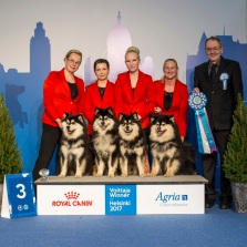 Kennel Peikkovuoren BIS3 BREEDER at Finnish Winner 2017