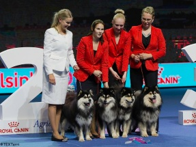 Kennel Peikkovuoren BIS2 BREEDER at Helsinki Winner 2017