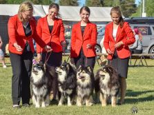 Kennel Peikkovuoren BIS2 BREEDER at Joensuu NAT 2018