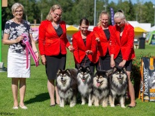 Kennel Peikkovuoren BIS1 BREEDER at Laukaa NAT 2018