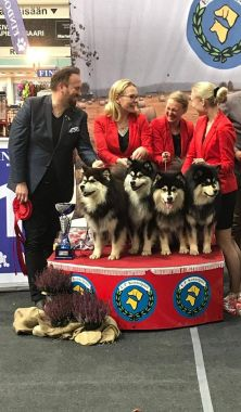 Kennel Peikkovuoren BIS1 BREEDER at Seinäjoki INT 2018