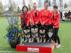 Kennel Peikkovuoren BIS2 BREEDER at Varkaus INT 2015