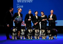 Breeder Of The Year 2018